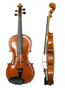 Violin - willan academy of music