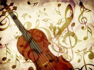 Violin fact