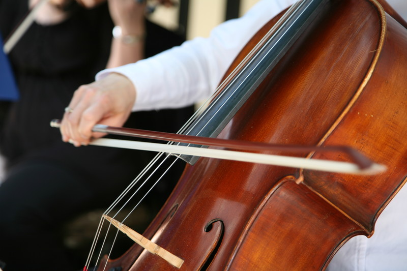 Group Cello Classes in nyc